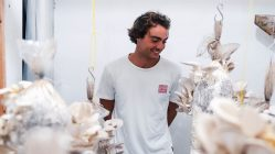 growing oyster mushrooms zero waste in Portugal